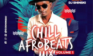 Dj Shinski Chill Afrobeat 2020 Naija Mix Vol 1