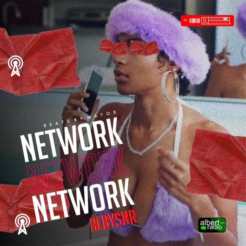 Albysnr Network