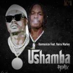 """Harmonize – """"Ushamba"""" (Remix) ft. Naira Marley"""