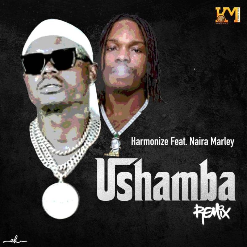 Harmonize Ushamba Naira Marley