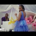 "[Video] Tiwa Savage – ""Park Well"" ft. Davido"