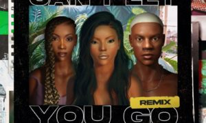 Stefflon Don Tiwa Savage Rema Can't Let You Go Remix Tiwa Savage Rema
