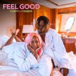 "[Video] Cuppy – ""Feel Good"" ft. Fireboy"