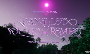 Stefflon Don Can't Let You Go Remix