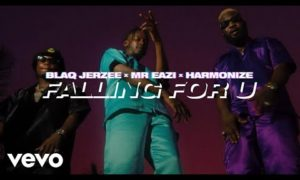 Blaq Jerzee, Mr Eazi, Harmonize - Falling For U