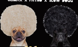 Climax Nikita Phyno Slowdog
