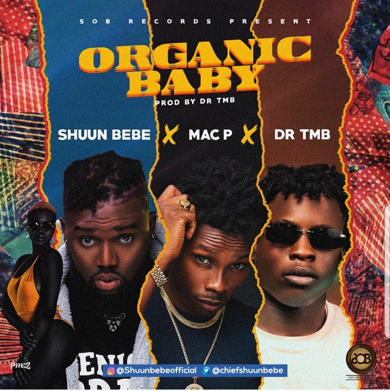 Shuun Bebe Organic Baby
