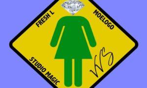 Studio Magic Fresh L VVS Moelogo