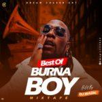 "[Mixtape] DJ Magic – ""Best Of Burna Boy"" Mix"