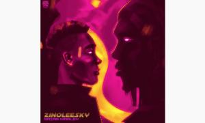 Zinoleesky Naira Marley Lyrics