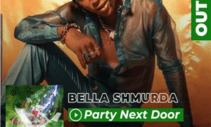Bella Shmurda, Party Next Door Lyrics
