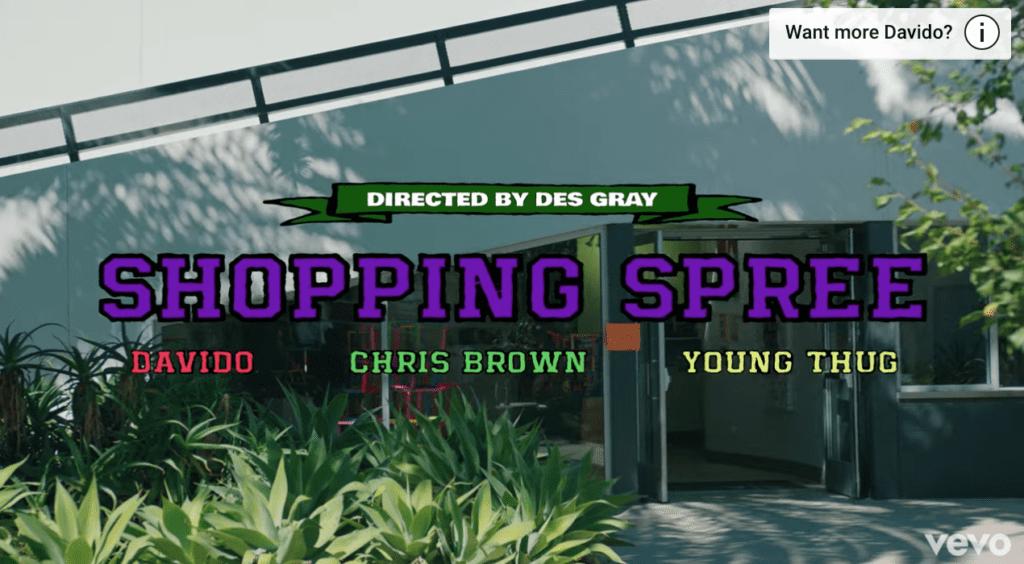 "[Video] Davido – ""Shopping Spree"" ft. Chris Brown, Young Thug"