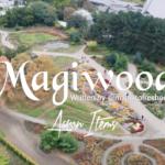 "Magnito – ""Magiwood"" ft. Bovi"