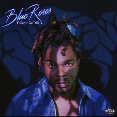 Tomidrey Blue Roses