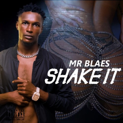 "Mr Blaes – ""Shake It"" #Arewapublisize"