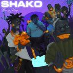 """Barry Jhay – """"Shako"""""""