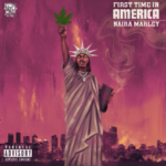 """Naira Marley – """"First Time in America"""" (Prod. by Rexxie)"""